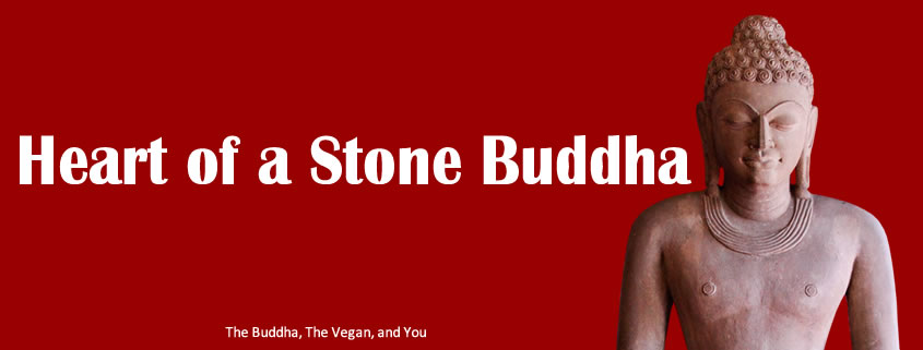 Heart of a stone buddha_845x321